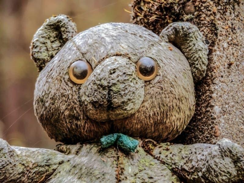 Przerażający stary niedźwiedź na gravestone zdjęcia stock