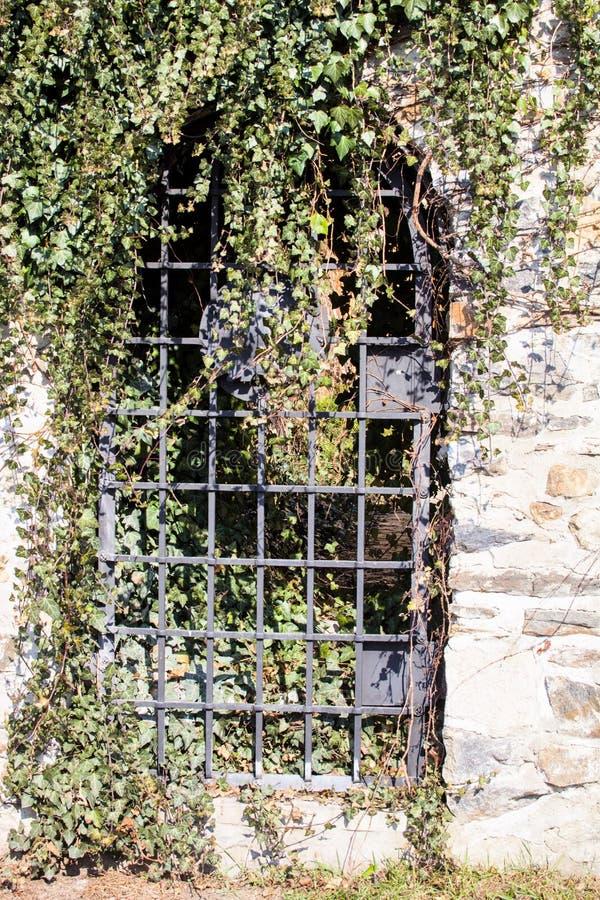 Przerastający z bluszczem zakazywał wejście Jihlava ramparts xvii wiek fotografia royalty free