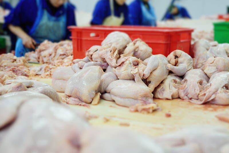 Przerobowy drób w przemysle spożywczym Kurczak obraz royalty free