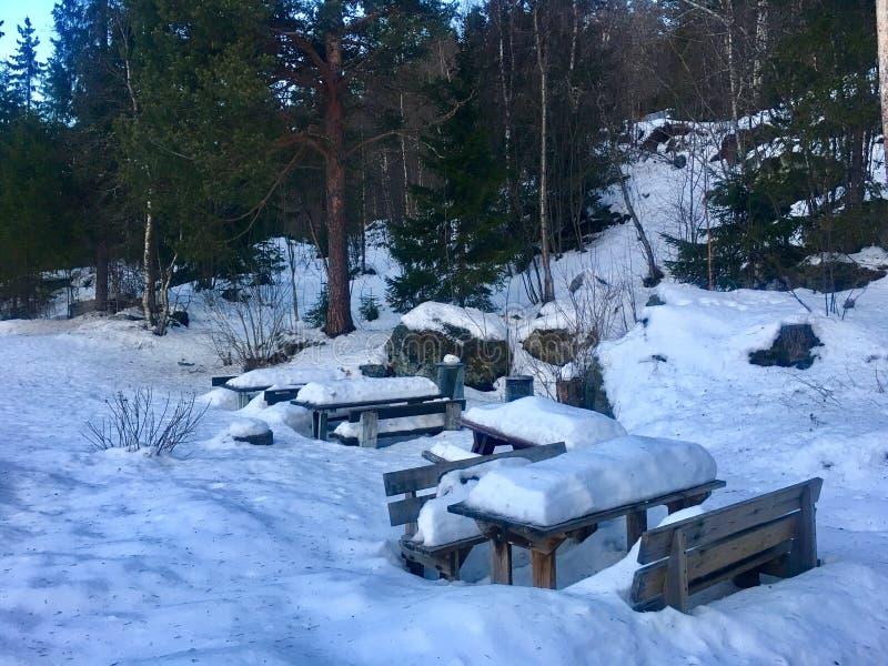 Przerwa stacyjny Norwegia obraz stock