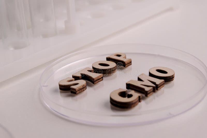 Przerwa zmienia genów produkty ZATRZYMUJE GMO drewniani listy kłaść na Petri naczyniu Laboranckie próbne tubki i kolby dla badać  fotografia stock