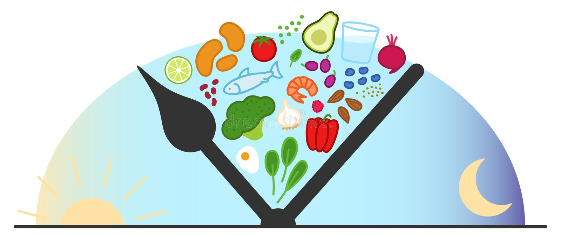 Przerywany zamocowanie, ograniczający łasowanie Zdrowi foods między zegarowymi rękami, wschód słońca, świt, półmrok, dzienny łaso ilustracja wektor