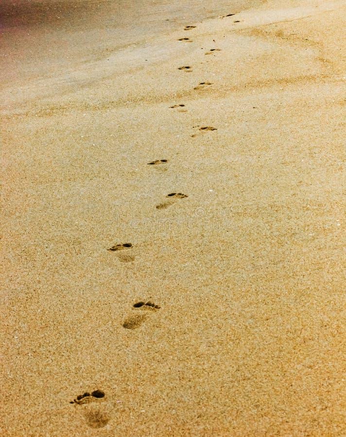 Przerzedże parę kroki na plaży stopniowo chodzącej daleko od Samotnie zdjęcie royalty free