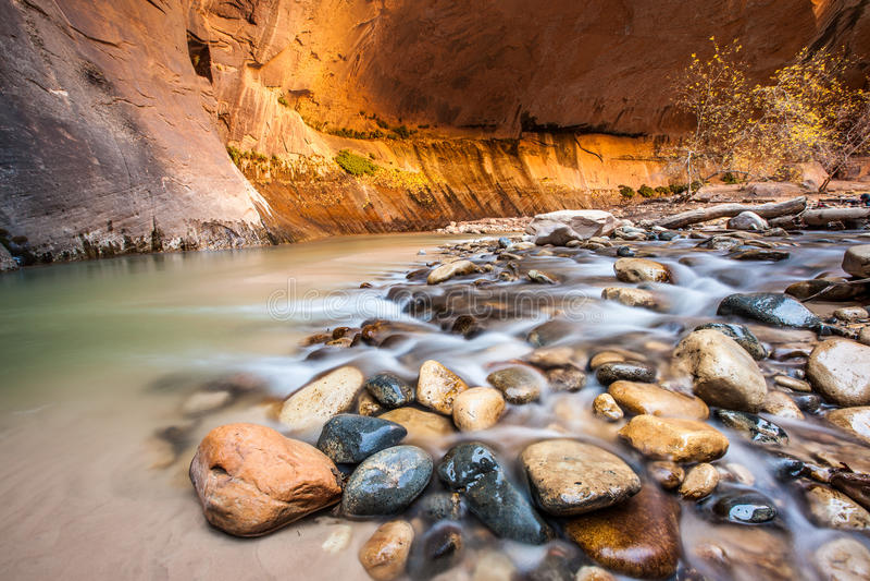 Przesmyki, Zion park narodowy, Utah zdjęcie royalty free