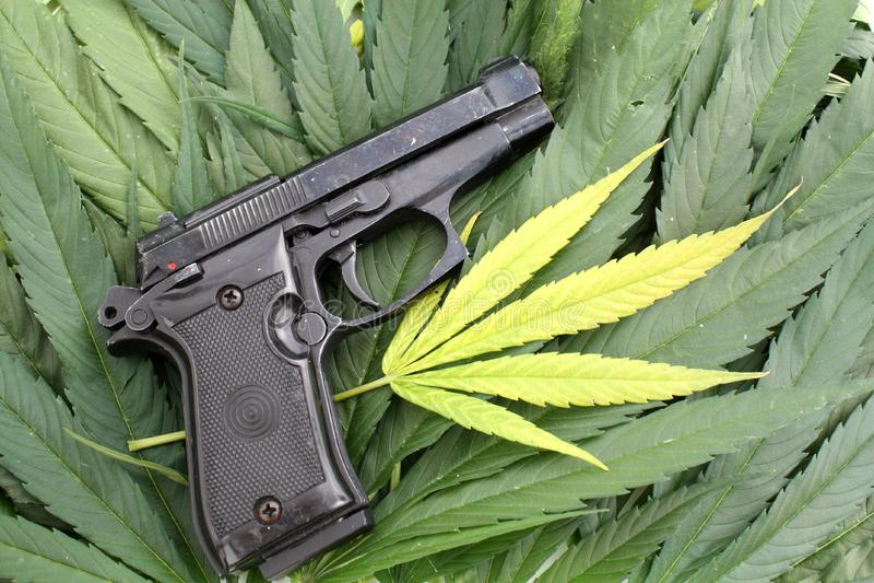 Przestępstwo bezprawnej marihuany konceptualna fotografia pistolet i marihuana leaf obraz royalty free