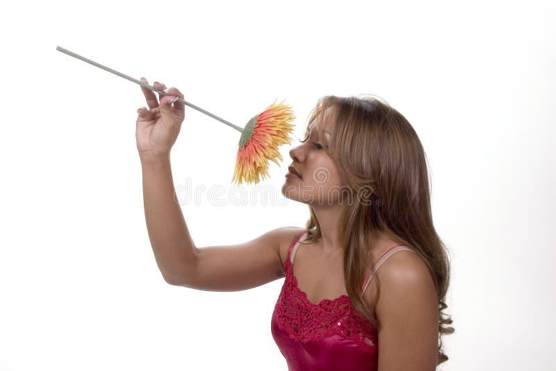 przestań zapach zdjęcia royalty free