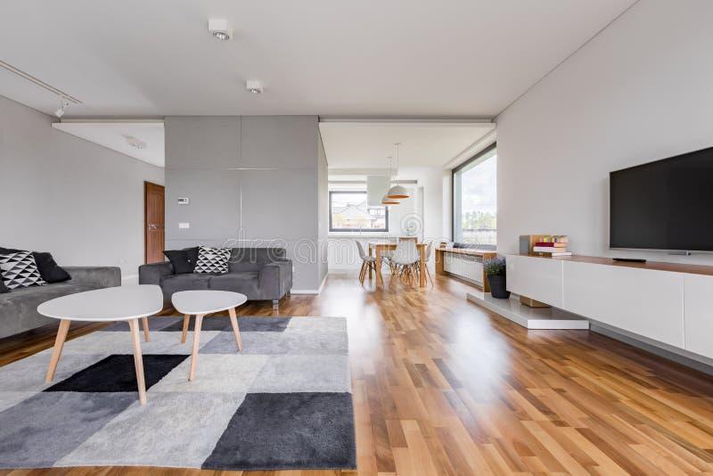 Przestronny żywy pokój z tv zdjęcie royalty free
