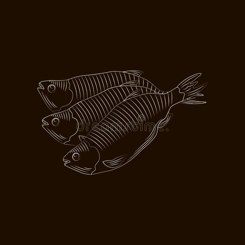 Przestylizowanie rysuje ręcznie Ryba dla piwnego wektoru odizolowywającego royalty ilustracja