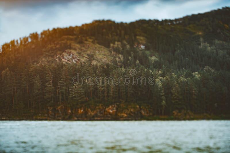 Przesunięcie sceneria z rzeką i lasem na górze fotografia royalty free