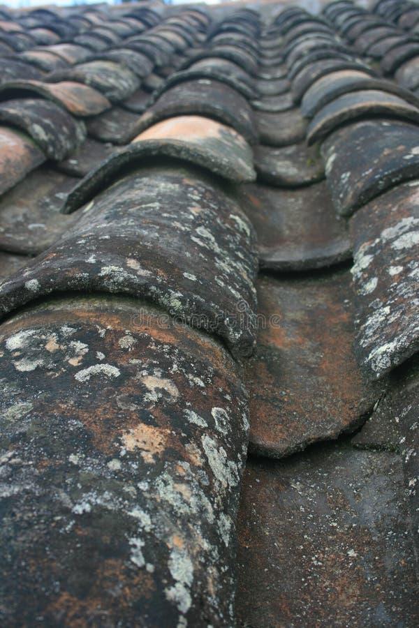 Przetarty i wietrzejący Terra - cotta dachowe płytki w Ekwadorskich Andes zdjęcia stock