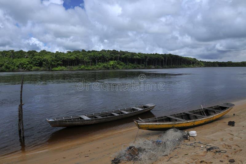 Przetrwanie w amazonka regionie zdjęcie stock