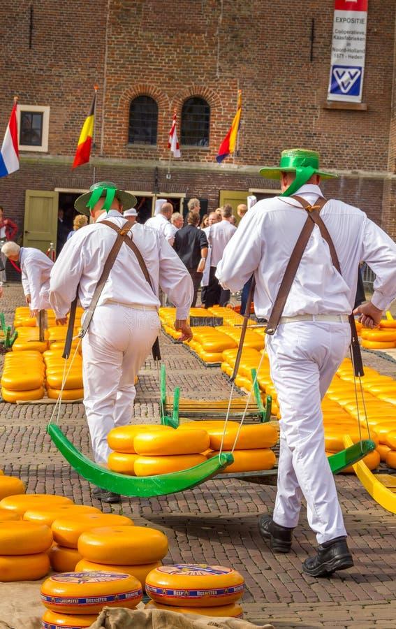 Przewoźnicy chodzący z wieloma serami na słynnym holenderskim rynku sera, Alkmaar, Holandia obrazy stock