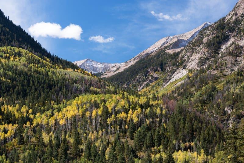 Przewodniczy górę przeglądać od Krystalicznej Rzecznej doliny, Kolorado zdjęcia royalty free
