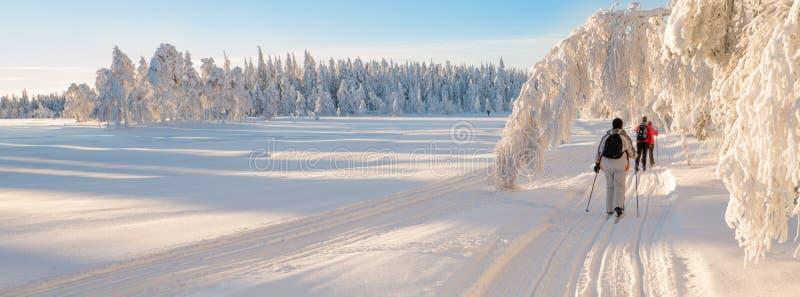 Przez cały kraj narciarstwo obraz royalty free