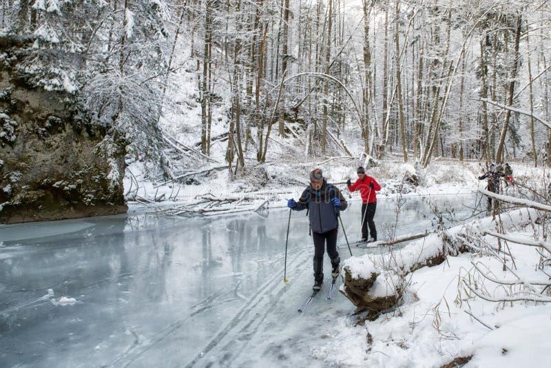 Przez cały kraj narciarstwo w zima lesie zdjęcie stock