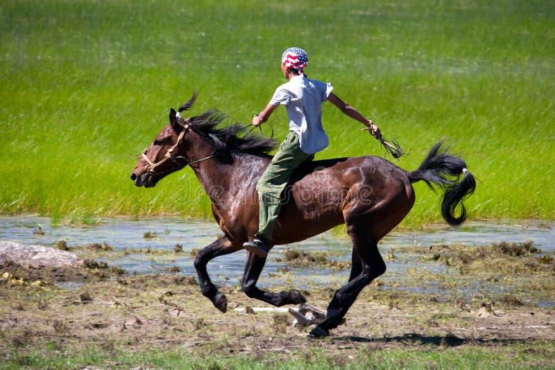 przez horseback step obrazy royalty free