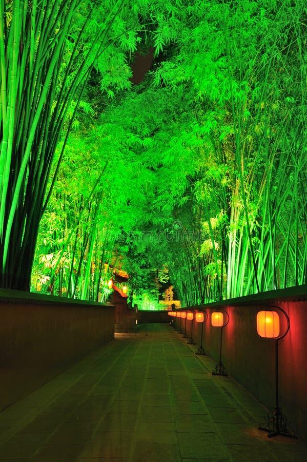Przy noc chińczyka ogród obrazy royalty free