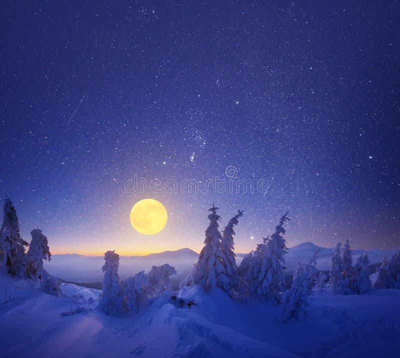 Przy noc zima krajobraz obrazy royalty free