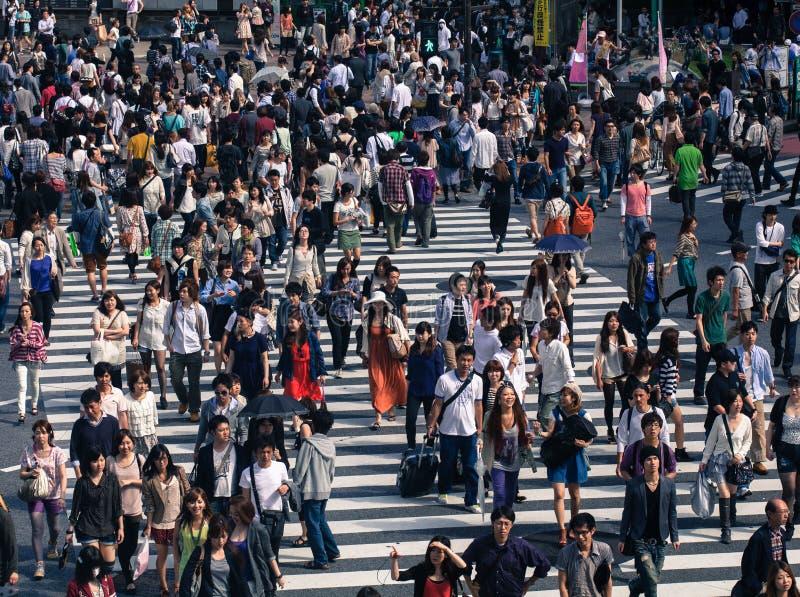 Przy Shinjuku ruchliwie zwyczajny skrzyżowanie, Tokio. obraz royalty free