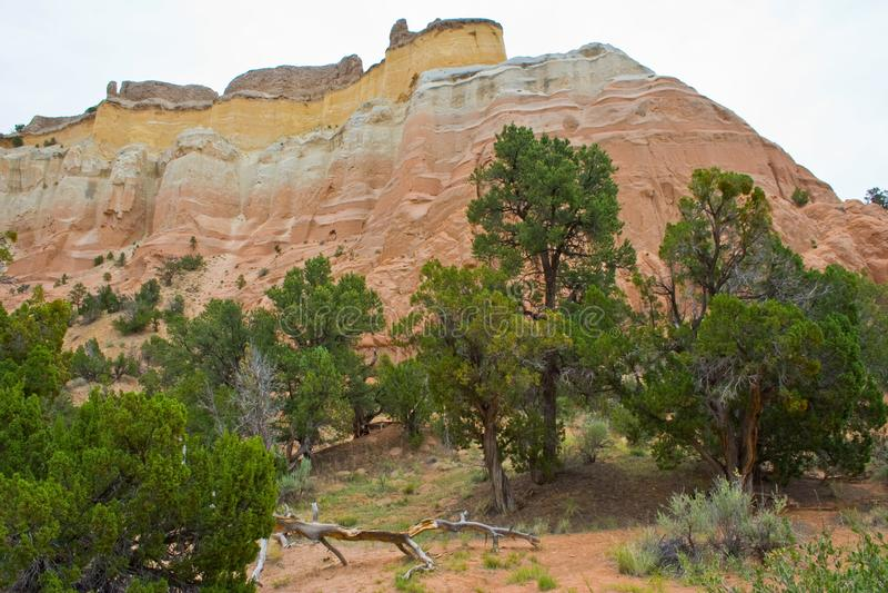 Przy widokiem Echowy amfiteatr w Carson lesie państwowym w Nowym - Mexico obrazy royalty free