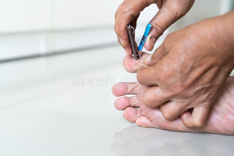 Przybija ścinek, starszej kobiety rozcięcia nożni gwoździe używać gwoździa cążki na białym tle, zbliżenie zdjęcie royalty free