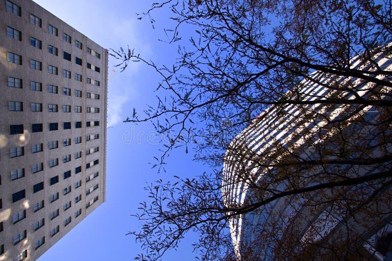 przyglądający śródmieścia niebo fotografia stock