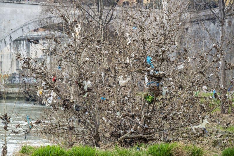 Przygnębiający plastikowy drzewo obraz stock