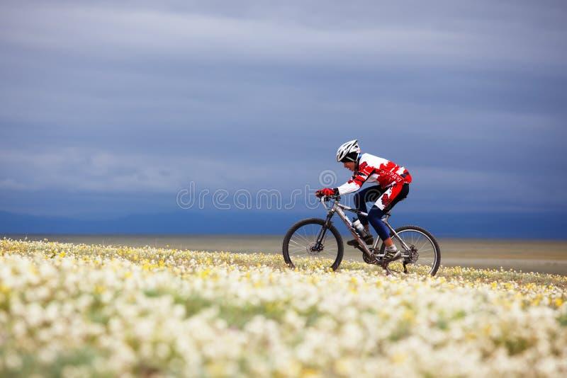 przygody roweru turniejowa halna wiosna zdjęcie stock