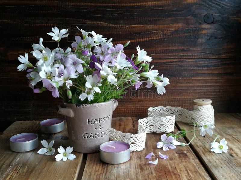 Przygotowania dzicy kwiaty w wieśniaka stylu obrazy stock