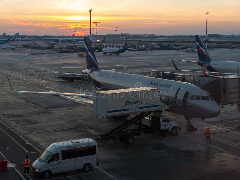 Przygotowania one robią dla lota samolot Rosyjska linia lotnicza Aeroflot w wczesnym poranku obraz stock
