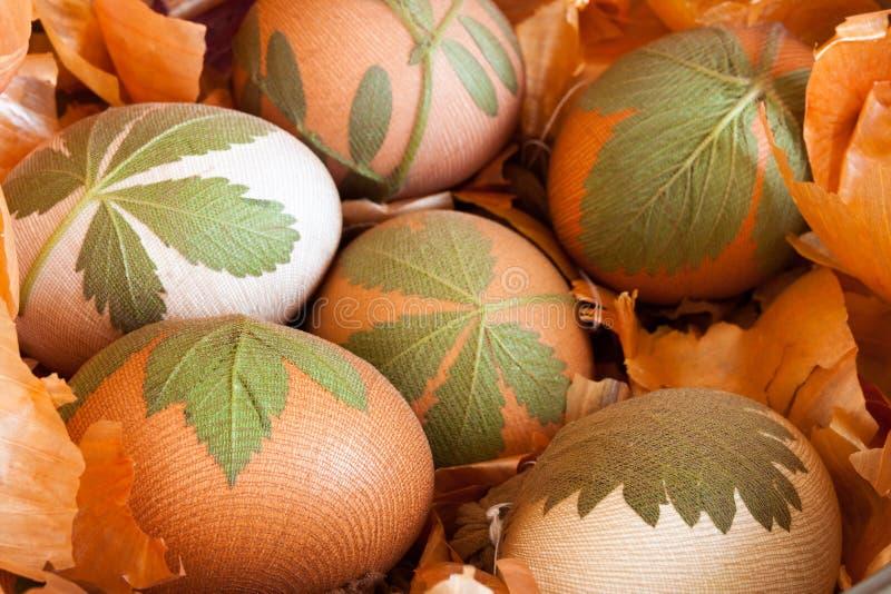 Przygotowanie Easter jajka farbujący z cebulkowymi łupami fotografia royalty free