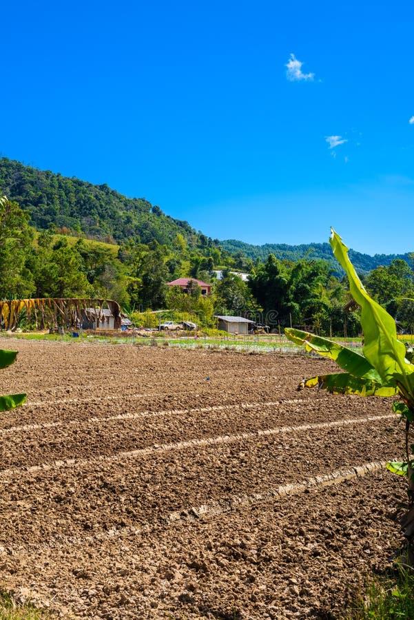 Przygotowanie ziemia dla Truskawkowej kultywaci, truskawki pole fotografia royalty free