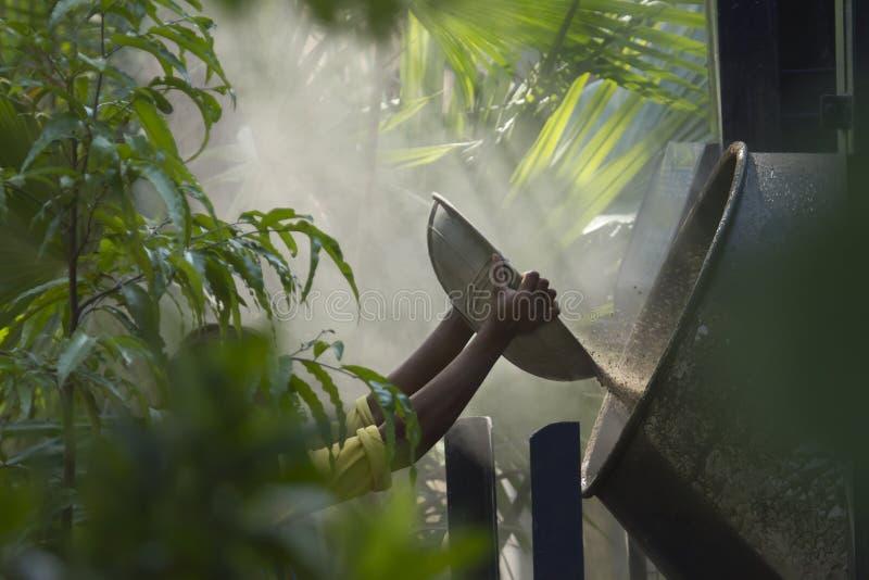 Przygotowywać cement w środku dżungla zdjęcie stock