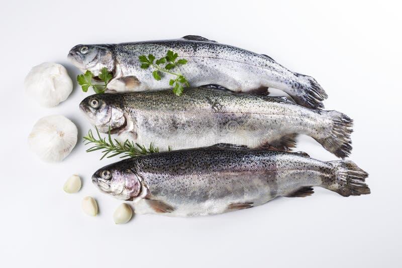 Przygotowywa ryba dla posiłku fotografia royalty free