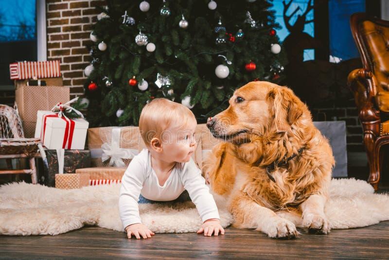 Przyjaźń mężczyzny dziecko i psa zwierzę domowe Tematu nowego roku zimy Bożenarodzeniowi wakacje Chłopiec na podłodze dekorował d fotografia royalty free