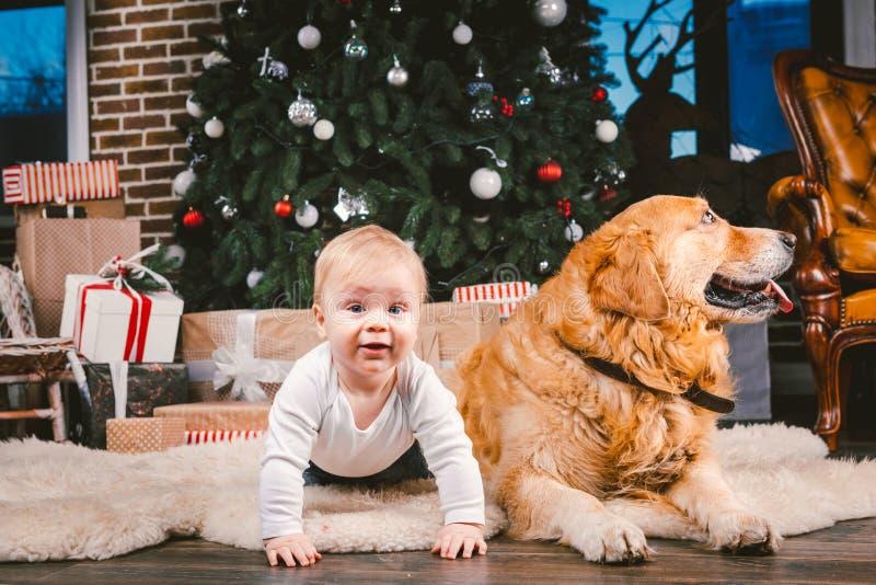 Przyjaźń mężczyzny dziecko i psa zwierzę domowe Tematu nowego roku zimy Bożenarodzeniowi wakacje Chłopiec na podłodze dekorował d obraz royalty free