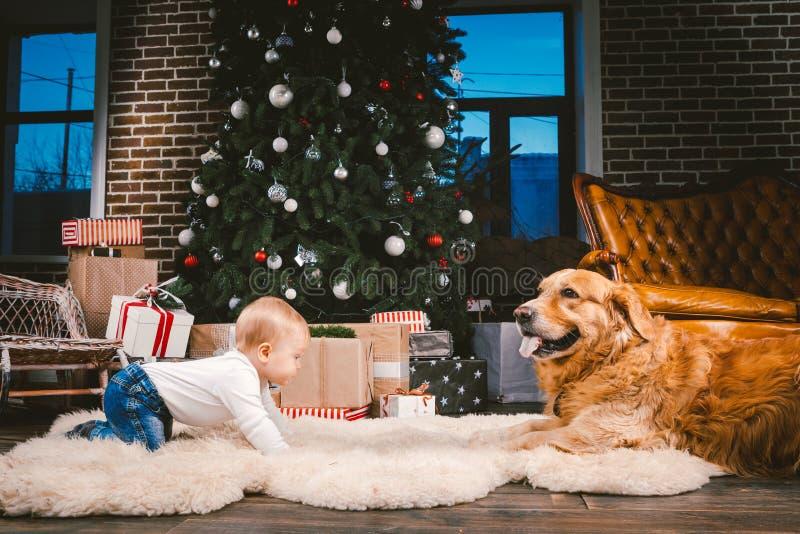 Przyjaźń mężczyzny dziecko i psa zwierzę domowe Tematu nowego roku zimy Bożenarodzeniowi wakacje Chłopiec na podłodze dekorował d zdjęcia stock