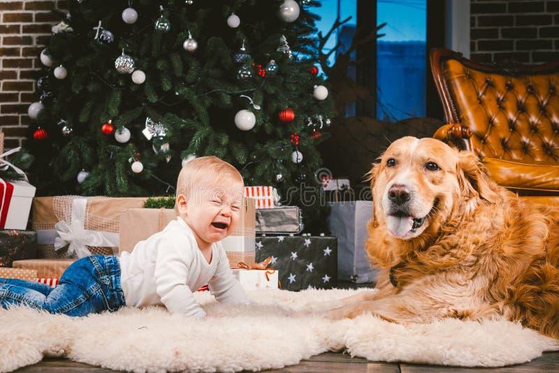 Przyjaźń mężczyzny dziecko i psa zwierzę domowe Tematu nowego roku zimy Bożenarodzeniowi wakacje Chłopiec na podłodze dekorował d obrazy stock