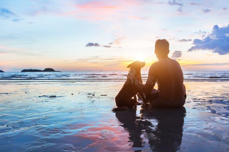 Przyjaźni pojęcie, mężczyzna i pies siedzi wpólnie, obrazy royalty free