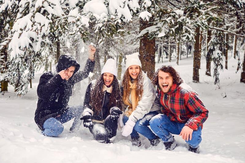 Przyjaciele pod drzewem z opadającym śniegiem w parku zimą zdjęcie stock