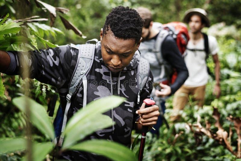 Przyjaciele trekking wpólnie w lesie obrazy stock