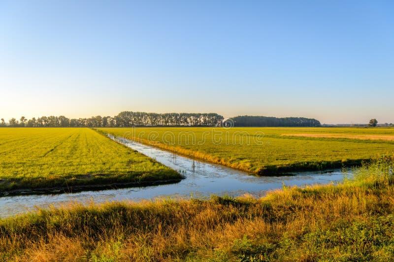 Przykopy w płaskim obszarze wiejskim w pogodnym backlight fotografia stock