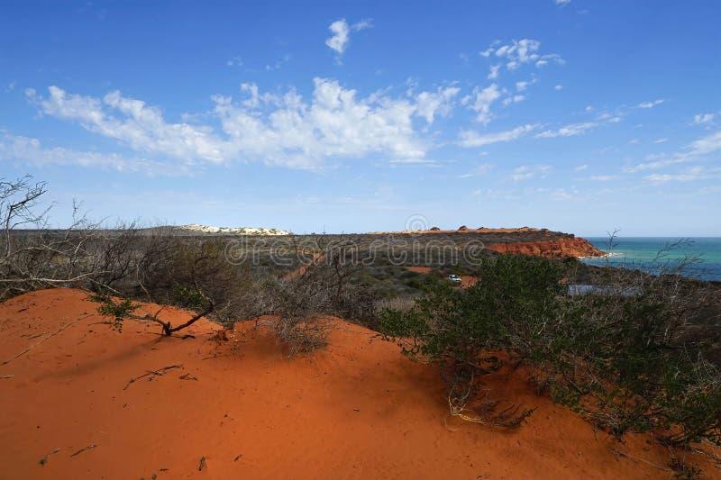 Przylądek Peron Australia obraz royalty free