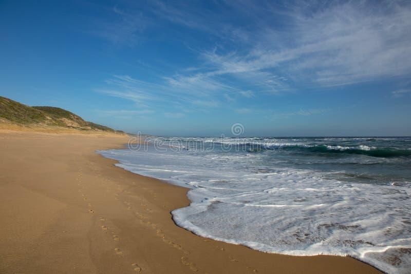 Przypływ w Sorrento, Australia obraz royalty free