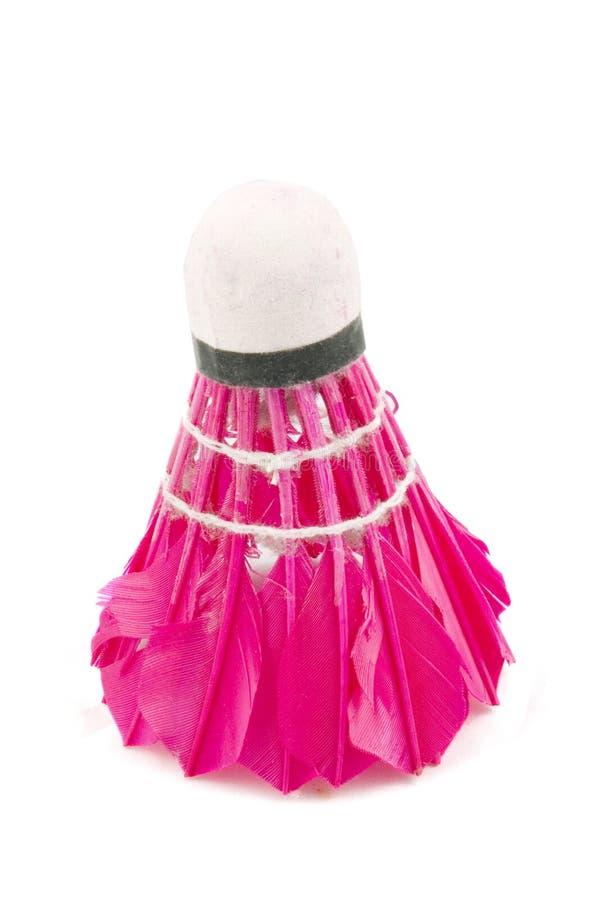 przypisuje badminton sporty kolorowych odosobnionych zdjęcie royalty free