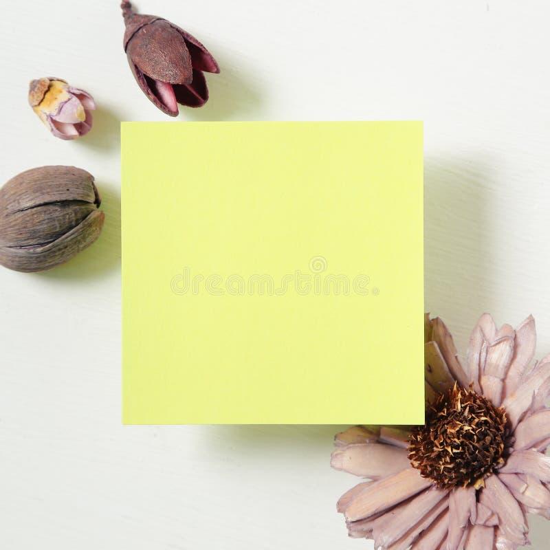Przypomnienie kleiste notatki z kwiatem na białym tle zdjęcie royalty free