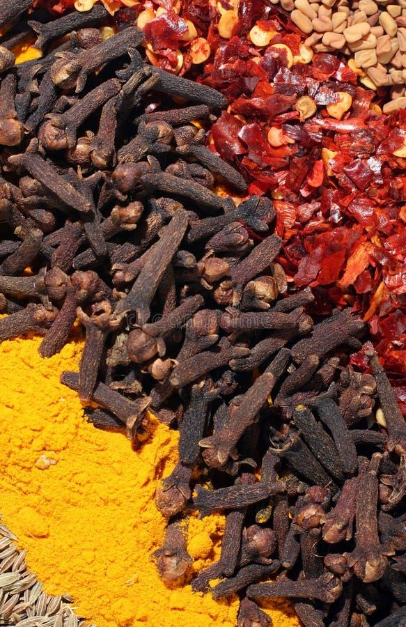 przyprawa przekątny abstrakcyjnych curry zdjęcia royalty free