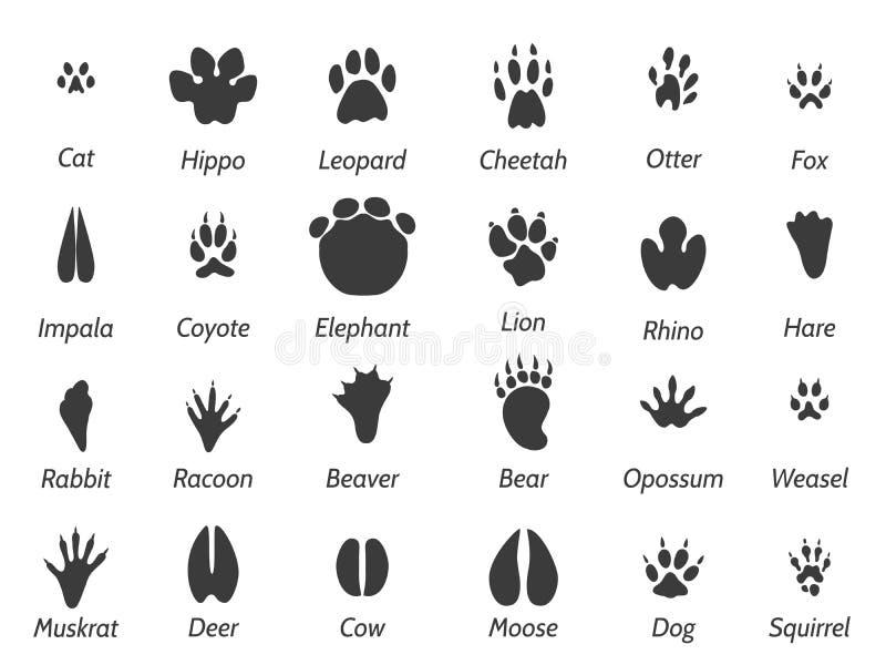 Przyrod zwierząt odciski stopy royalty ilustracja