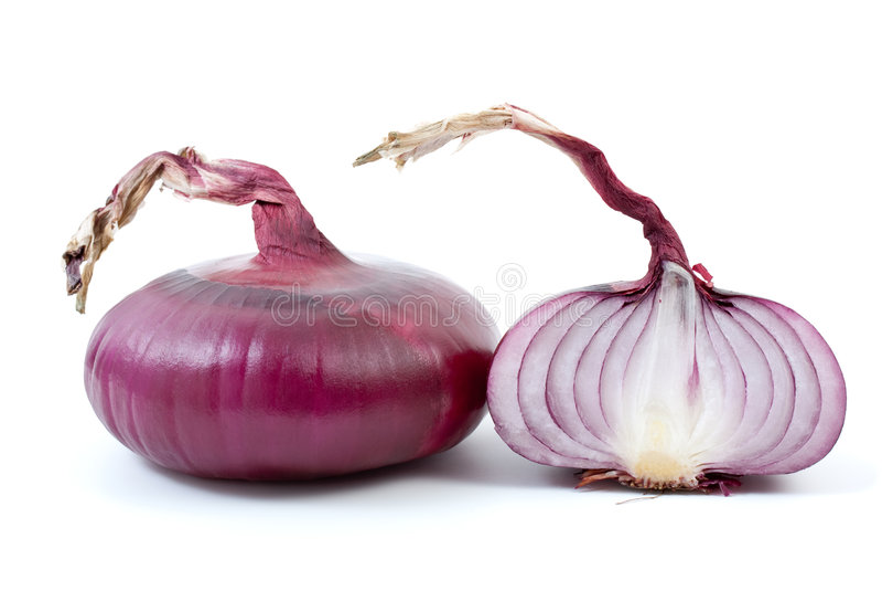 przyrodnie cebulkowe purpury zdjęcia stock