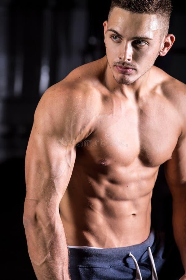 przystojni bodybuilder potomstwa fotografia royalty free